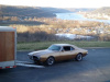 1967 Firebird Survivor